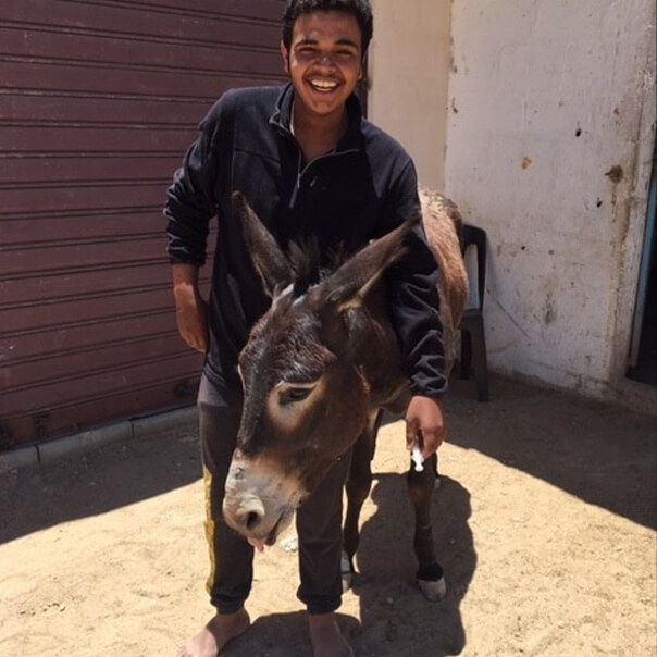 Jumaa stands with donkey Qamis after bringing him into the clinic to be treated for lameness.